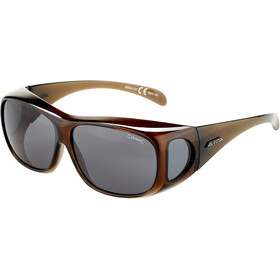 Alpina Sunglasses Overview, black transparent/black